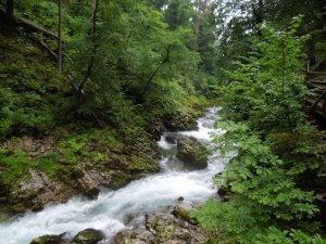 Slovenian gorge