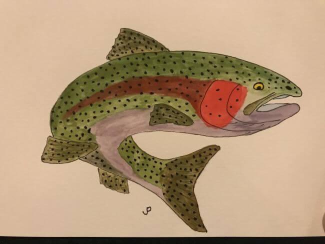 jp trout